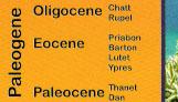 Paleogene stages