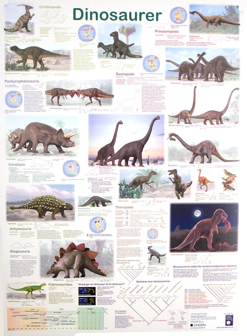 """Poster """"Dinosaurer"""" in Danish"""