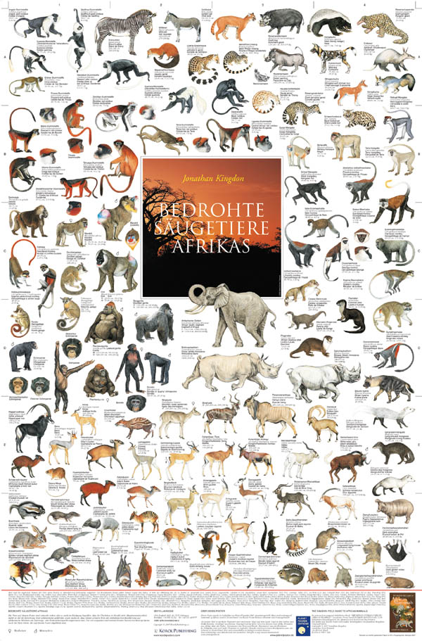 Poster Bedrohte Säugetiere Afrikas