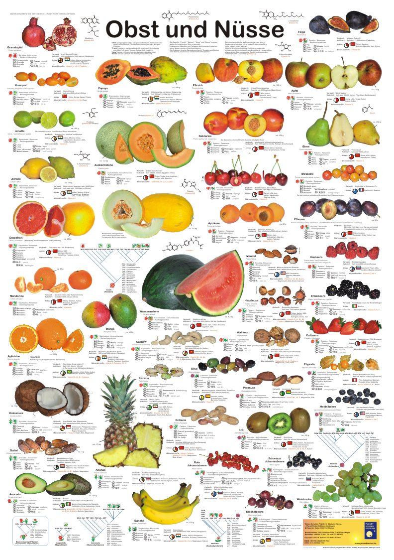 Poster: Obst und Nüsse